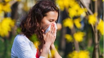 Prepararsi alle allergie