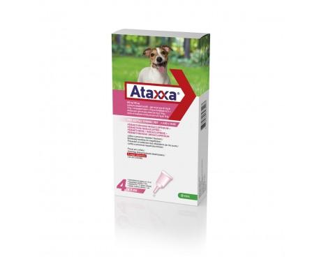 ATAXXA SPOT ON 4 PIPETTE 1ML 4-10KG