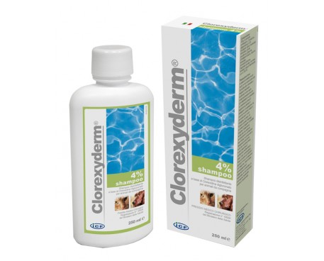 CLOREXYDERM SH 4% 250ML